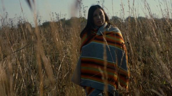 Cranes _vimeo